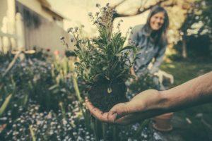 Comment bien entretenir son jardin?