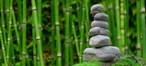 Comment concevoir un jardin Feng shui ?